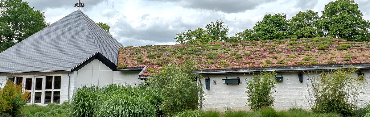 acoperisul verde solutia ideala